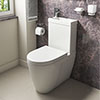 Iconic Combined Two-In-One Wash Basin + Toilet (Inc. Tap & Waste) profile small image view 1