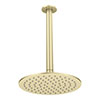 Arezzo Brushed Brass 200mm Thin Shower Head + Ceiling Mounted Arm profile small image view 1