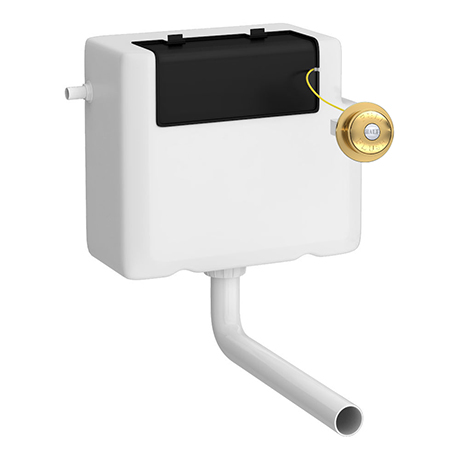 Chatsworth Traditional Dual Flush Concealed Cistern - Brushed Brass
