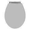 Carlton Stone Grey Wooden Soft Close Toilet Seat profile small image view 1