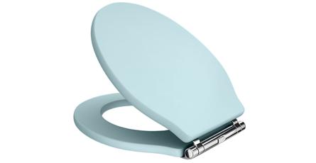 Blue coloured toilet seat
