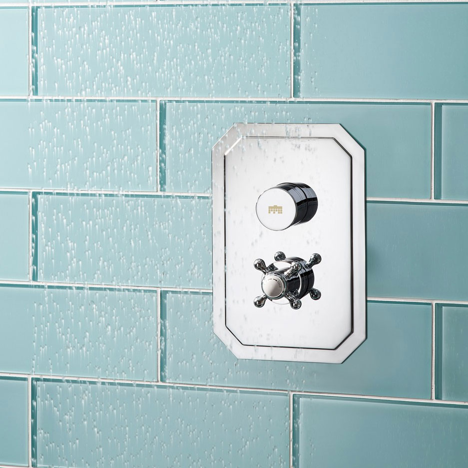Crosswater - Dial Belgravia 1 Control Shower Valve - Portrait profile large image view 3