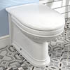 Silverdale Damea Back To Wall BTW Toilet + Soft Close Seat profile small image view 1