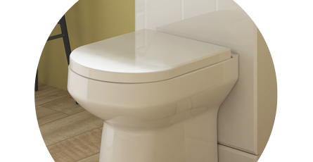 D Shaped Toilet With A D Shaped Toilet Seat