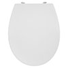 Armitage Shanks Sandringham 21 Seat & Cover - Metal Hinges - E131701 profile small image view 1
