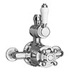 Trafalgar Traditional Exposed Twin Shower Valve profile small image view 1