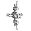 Chatsworth 1928 Traditional Triple Exposed Thermostatic Shower Valve profile small image view 1