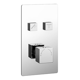 Milan Twin Modern Square Push-Button Shower Valve with 2 Outlets
