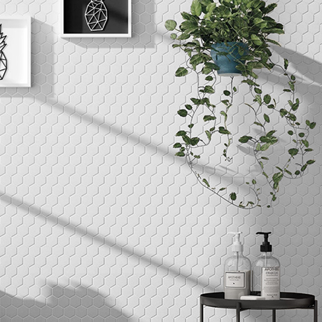 Elise White Hexagon Wall and Floor Tiles - 170 x 520mm