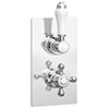 Thames Traditional Twin Concealed Thermostatic Shower Valve profile small image view 1