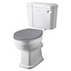 Bayswater Fitzroy Comfort Height Traditional Close Coupled Toilet with Ceramic Lever Flush profile small image view 1