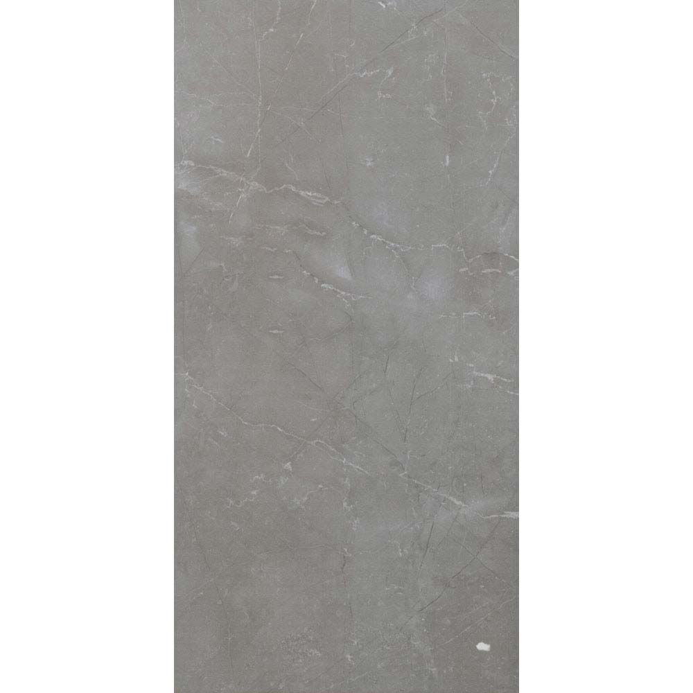 Faro Grey Matt Wall Tiles - 25 x 50cm Large Image