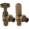 Gosport Traditional Daisy Wheel Angled Radiator Valves - Antique Brass profile small image view 1