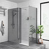 Arezzo 1950mm Grey Tinted Glass Wetroom Screen + Support Arm profile small image view 1