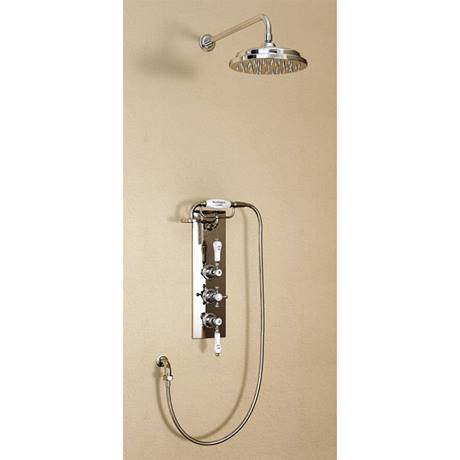 "Burlington Clyde Claremont Valve w Cradle, Straight Arm, 9"" Rose & Shower Kit - Brass Backplate"