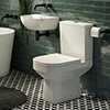 Harmonia Cloakroom Suite 0TH (Basin + Close Coupled Toilet) profile small image view 1