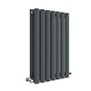 Hudson Reed Revive 600 x 412mm Horizontal Double Panel Radiator - Anthracite - HLA37D profile small image view 1