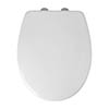 White Thermoset Soft Close Toilet Seat with Quick Release profile small image view 1