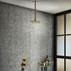 Arezzo Brushed Brass Industrial Style Shower System with Concealed Valve + Ceiling Mounted Head profile small image view 1