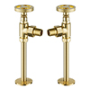 Arezzo Brushed Brass Industrial Style Angled Radiator Valves profile small image view 1