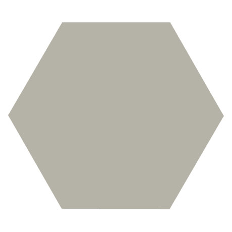 Kai Light Grey Hexagon Wall and Floor Tiles - 258 x 290mm