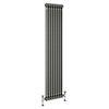 Keswick 1800 x 372mm Raw Metal (Lacquered) 2 Column Radiator profile small image view 1