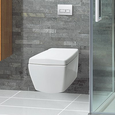 Bauhaus - Linea Wall Hung Pan with Soft Close Seat Feature Large Image