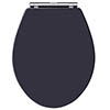 Old London Twilight Blue Wooden Soft Close Seat For Richmond Toilets - LOS399 profile small image view 1