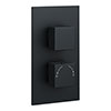 Arezzo Square Modern Twin Concealed Shower Valve with Diverter - Matt Black profile small image view 1