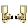 Modern Angled Radiator Valves - Brushed Brass profile small image view 1
