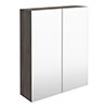 Brooklyn 600mm Grey Avola Bathroom Mirror Cabinet - 2 Door profile small image view 1
