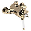Bristan 1901 Exposed Concentric Top Outlet Shower Valve - Gold - N2-CSHXTVO-G profile small image view 1