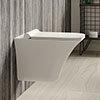 Hudson Reed Grace Rimless Wall Hung Pan & Soft Close Seat - NCT140 profile small image view 1