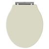 Old London - Pistachio Soft Close Toilet Seat (For Chancery Toilets) - NLS298 Small Image