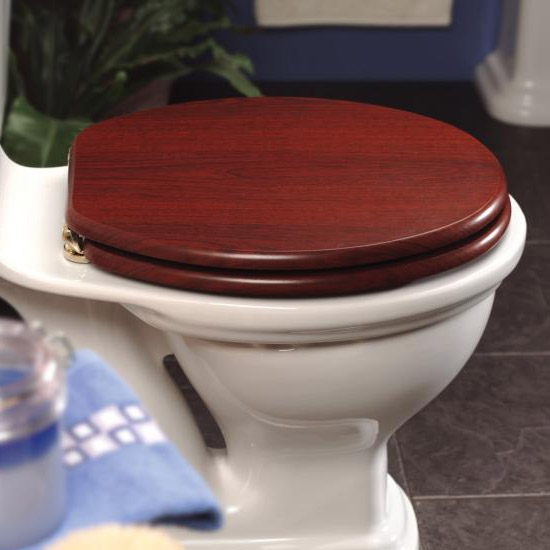 New Generation Platinum Toilet Seat with Brass Hinges - Mahogany Profile Large Image