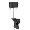 Burlington Jet Black Medium Level Traditional Toilet profile small image view 1