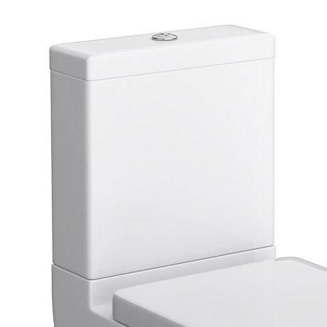 Cruze Dual Flush Cistern