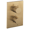 Crosswater - Brushed Brass MPRO Crossbox 2 Outlet (Fixed Head/Handset Icons) Trim & Levers Finishing Kit profile small image view 1