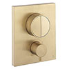 Crosswater MPRO Crossbox Push Brushed Brass Effect 2 Outlet Trim Set profile small image view 1