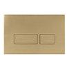 Crosswater MPRO Brushed Brass Dual Flush Plate - PROFLUSHF profile small image view 1