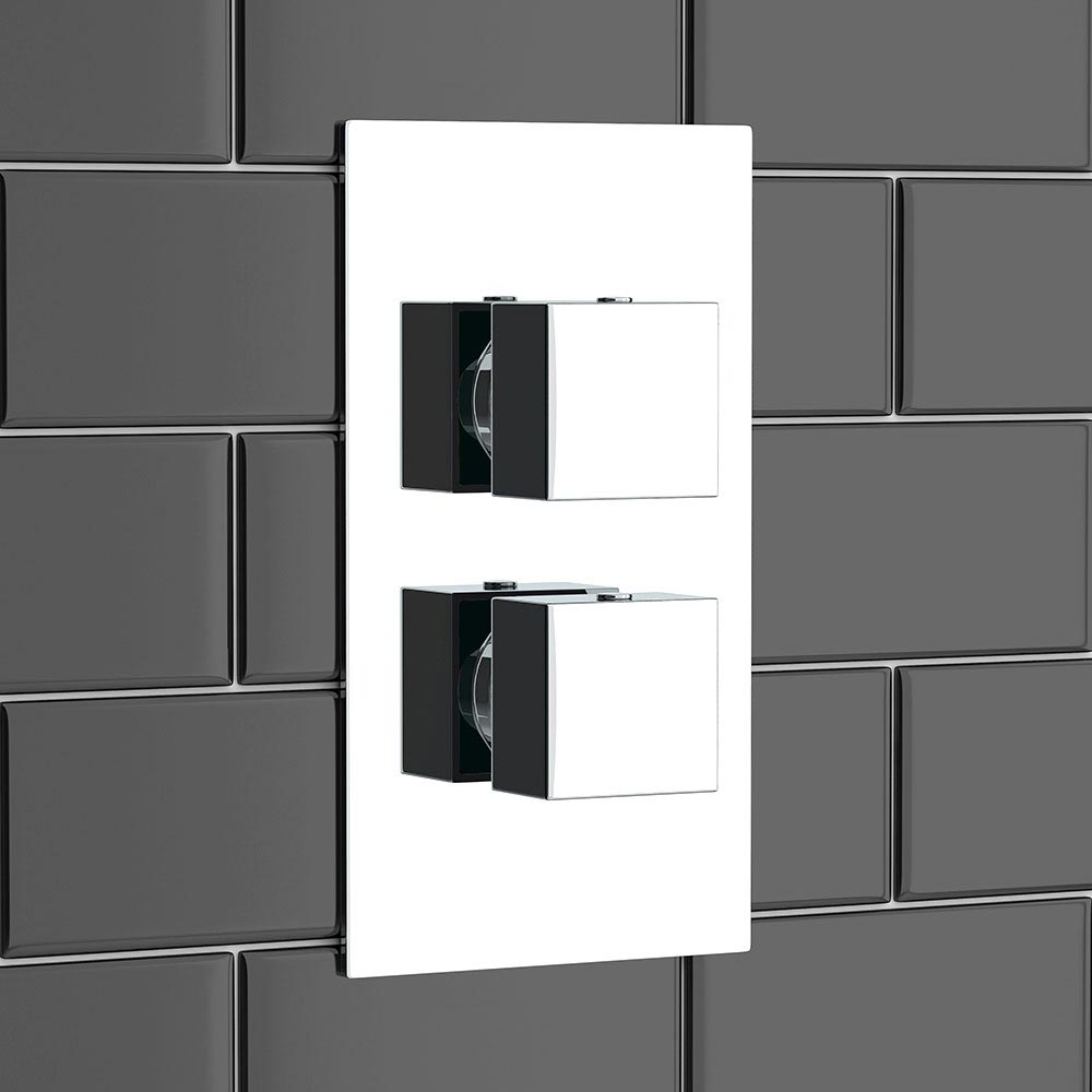 Plaza Square Twin Concealed Thermostatic Shower Valve + Slider Rail Kit profile large image view 3