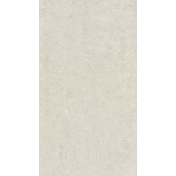RAK - 6 Lounge Ivory Porcelain Polished Tiles - 300x600mm - 9GPD-52 Large Image