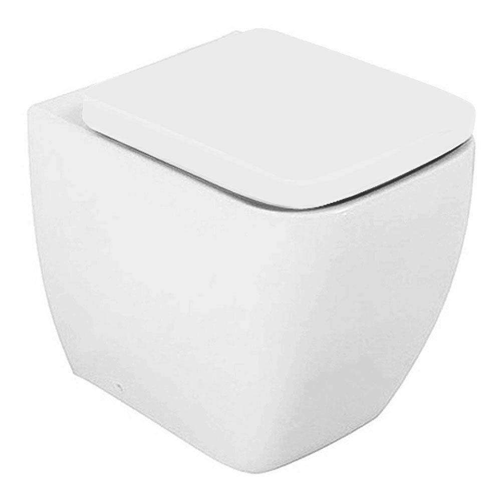 RAK Metropolitan Back to Wall Pan & Soft Close Urea Seat Large Image
