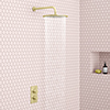 Arezzo Brushed Brass Round Shower Package with Concealed Valve + 300mm Head profile small image view 1