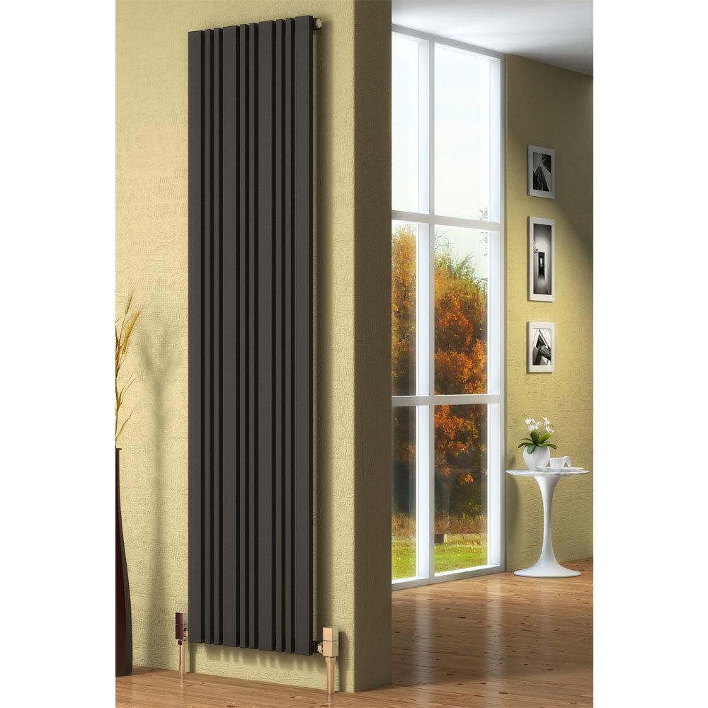 Reina Bonera Vertical Steel Designer Radiator - Anthracite profile large image view 2
