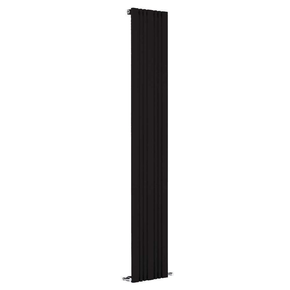 Reina Bonera Vertical Steel Designer Radiator - Black Large Image