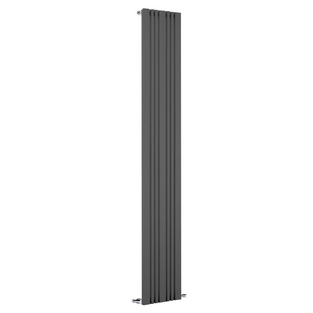 Reina Bonera Vertical Steel Designer Radiator - Anthracite Large Image