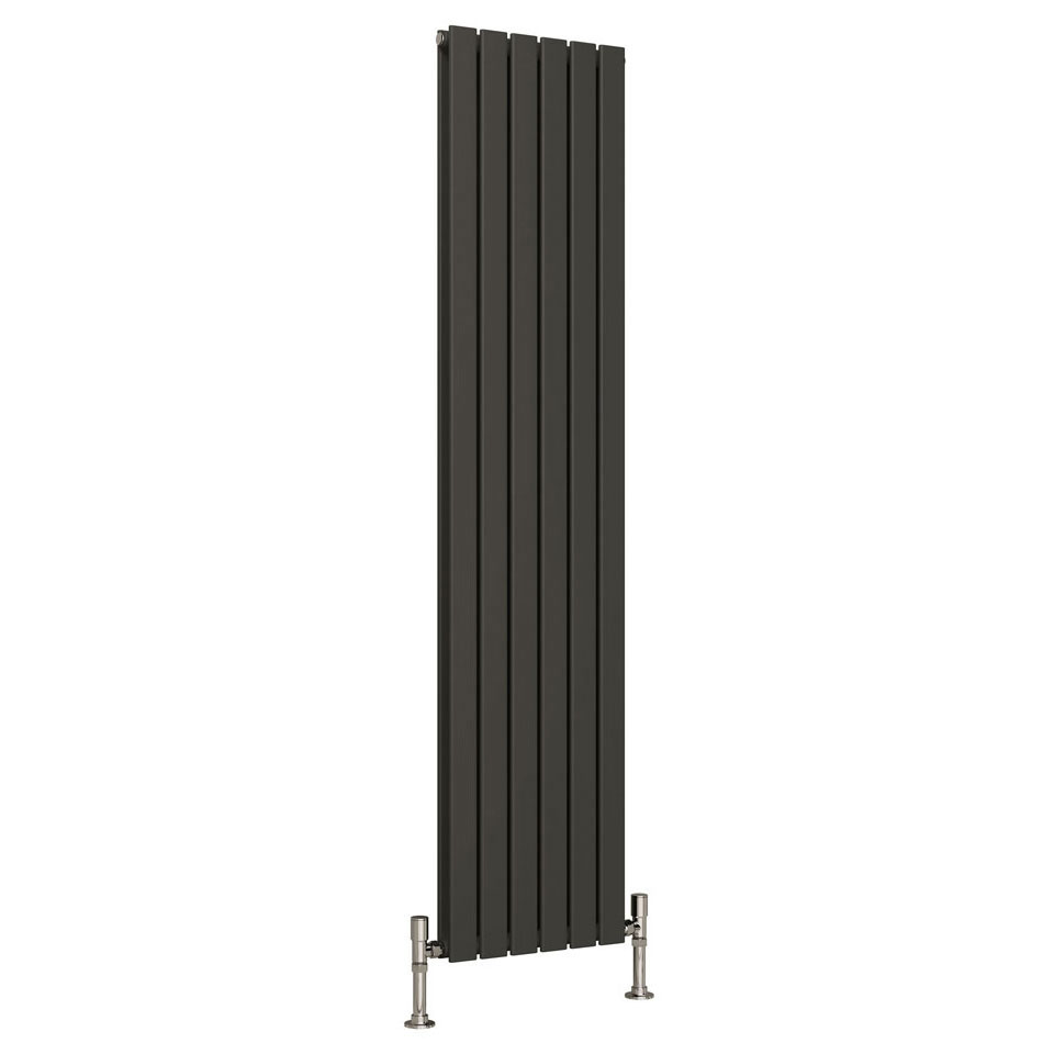 Reina Flat Vertical Double Panel Designer Radiator - Anthracite Large Image