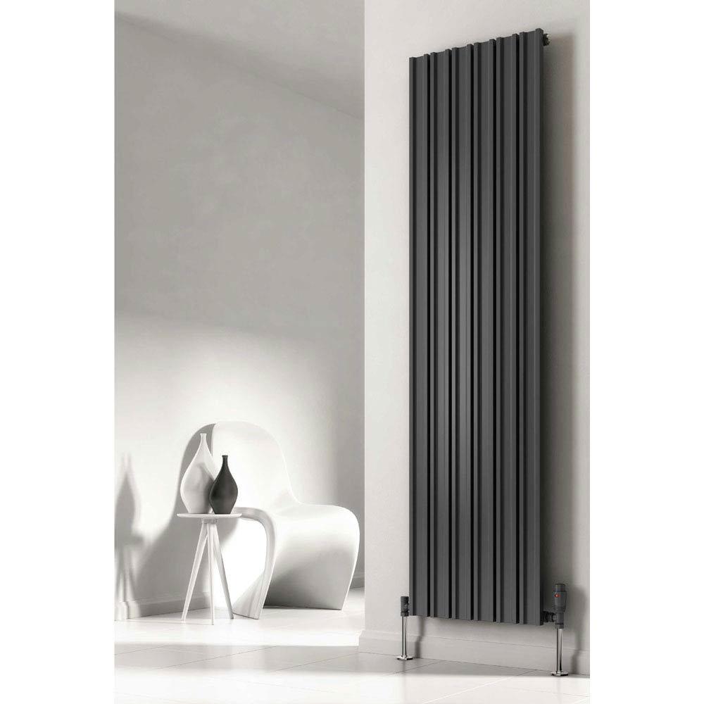 Reina Raile Vertical Steel Designer Radiator - Anthracite Large Image