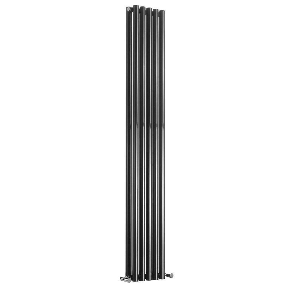 Reina Round Double Panel Steel Designer Radiator - Black profile large image view 1